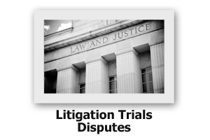 Litigation Trials Disputes